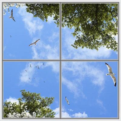 image ciel pour plafond cumulux led avec arbres, fleures et oiseaux