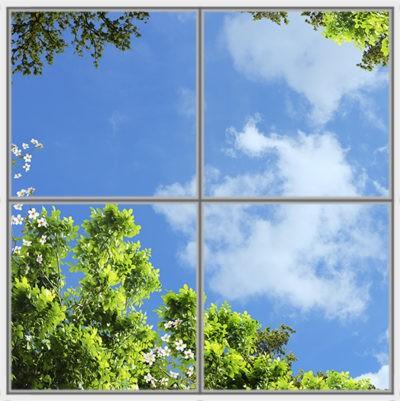 image de ciel pour plafond cumulux led arbre et fleures