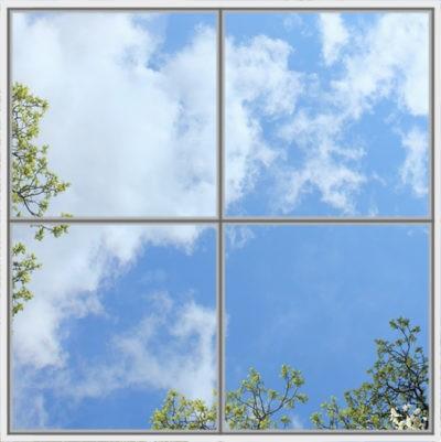 image de ciel de plafond cumulux led avec arbres et fleures