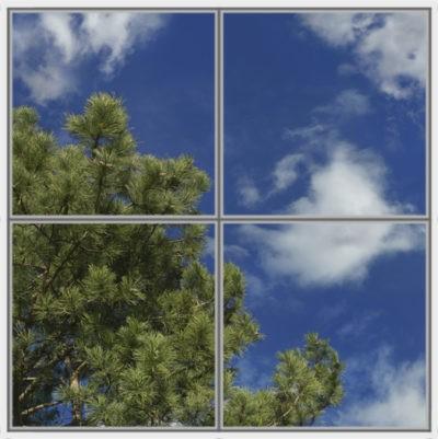 image pour plafond lumineux cumulux avec ciel nuageux et pins