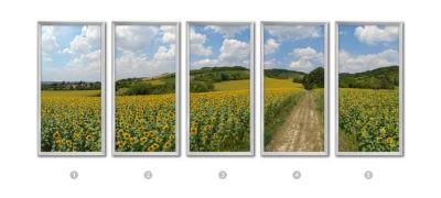 fausse fenêtre led champs de tournesols cumulux