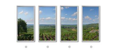 4 photographies panoramiques et verticales représentant le vignoble de Pommard