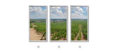 3 fenêtres paysage Vignoble de Pommard