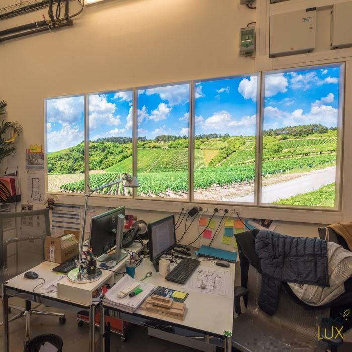 Fenêtres virtuuelles - Fondation Louis Vuitton