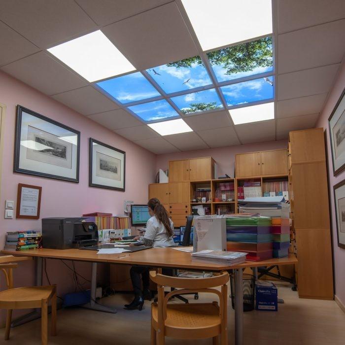 Verrière artificielle plafond lumineux LED cumulux