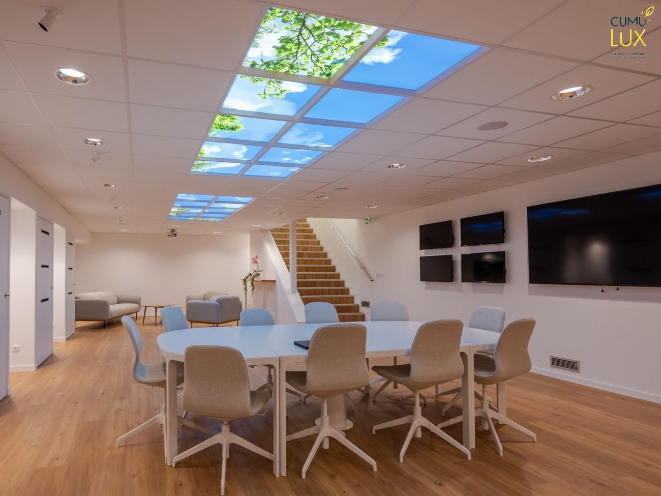 Faux plafond ciel dans un showroom en sous-sol