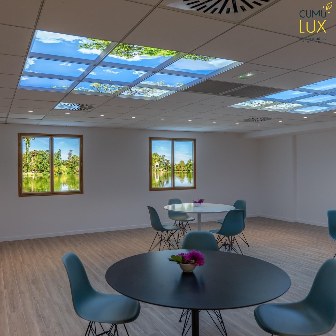 Ciel lumineux Cumulux et Lac de Daumesnil dans une salle de restauration au sous-sol chez Interfel